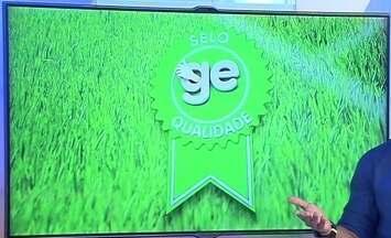 Confira os lances que ganharam o Selo GE de qualidade desta semana - Confira os lances que ganharam o Selo GE de qualidade desta semana