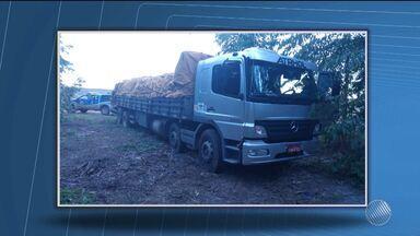 Polícia apreende caminhão carregado com 19 toneladas de cebola em Itamaraju - O caminhão tinha sido roubado em um posto de combustível.