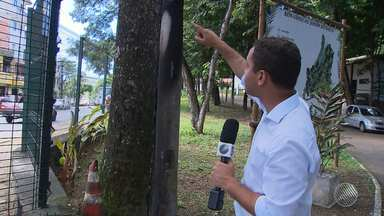 """Vândalos tocam fogo em guarita do Jardim Botânico de São Marcos, em Salvador - Veja no quadro """"Fiscal do BMD"""". Envie sua denúncia para bmd@redebahia.com.br."""