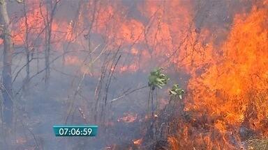 Julho é o mês com mais registros de focos de incêndio em Corumbá - Também aumentou o número de atendimentos médicos a pessoas com problemas respiratórios.