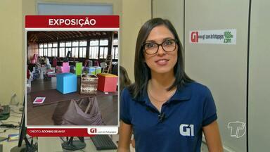 Dica G1: Artesão expõe peças feitas com materiais reutilizados em Santarém - Profissional trabalha no ramo de reutilização há pelo menos 10 anos. Exposição segue até o dia 29 de julho no Terminal Fluvial Turístico.