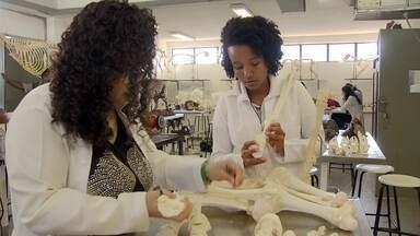 Laboratório da UnB trata restos mortais de animais para exposição - Museu de Anatomia de Veterinária, da UnB, realiza técnicas de taxidermia, para manter esqueletos e animais.