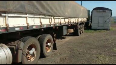 Motorista é preso em flagrante com carregamento de madeira nobre e nota falsa - As 40 toneladas da madeira iam para Santa Catarina