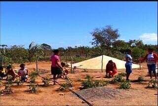 Associação Cristã de Base incentiva agricultura familiar - Entidade prepara comunidades na convivência com a seca.