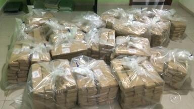 Dise prende traficante com mais de 450 quilos de maconha em Sorocaba - Uma operação conjunta da Delegacia de Investigações Sobre Entorpecentes (Dise) e da Guarda Civil Municipal terminou com a prisão de 3 pessoas e a apreensão de mais de 450 quilos de maconha na noite de sábado (6), em Sorocaba (SP).