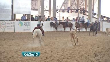 Campo Grande recebe apaixonados pela competição de Laço Comprido - Esporte é tradição em Mato Grosso do Sul.