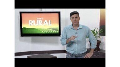 Confira os destaques do Inter TV Rural deste domingo (21) - Não perca