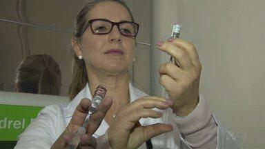 Vacinação contra a dengue terá pontos de aplicação em todas as UBS de Londrina - Medida foi tomada para melhorar o índice de imunização.