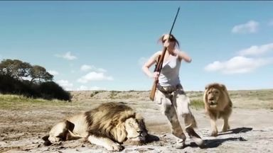 Detetive Virtual investiga vídeo de leão atacando caçadores - Vídeo foi feito em savana quando o casal tirava foto com outro leão abatido. Será que o vídeo é verdade ou mentira?