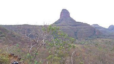 Caminhada ecológica serve de preparativo para a Romaria do Cerrado - Caminhada ecológica serve de preparativo para a Romaria do Cerrado.