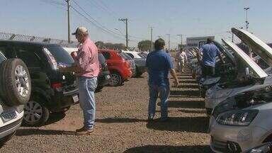Leilão de carros atrai consumidores à região em busca de bons negócios - Setor oferece oportunidades e economia de até 30%.