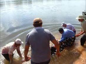 Botos presos após seca no Rio Formoso são resgatados por órgãos ambientais - Botos presos após seca no Rio Formoso são resgatados por órgãos ambientais