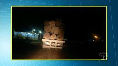 Caminhões são flagrados transportando toras de madeira sem proteção - Flagrante foi feito na PA-457.