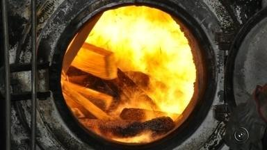 Polícia incinera duas toneladas de maconha apreendidas em caminhão - Um carregamento de duas toneladas de maconha, que foi apreendido pela polícia nesta segunda-feira (19), foi incinerado nesta quarta-feira (21) em uma caldeira de usina de etanol em Novo Horizonte (SP).