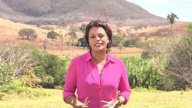 """Tv Bahia e o Bahia Rural conquistam o prêmio Banco do Nordeste de Jornalismo - O prêmio foi direcionado à série """"Matopiba"""", exibida no Bahia Rural em setembro de 2015."""
