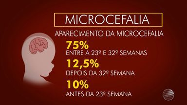 Casos de microcefalia no sexto mês de gestação são maioria, diz pesquisadores - A Bahia é o segundo estado brasileiro com o maior número de casos de microcefalia.