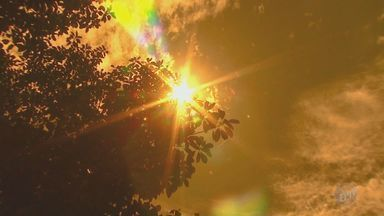 Especialistas alertam sobre os riscos da exposição aos raios UV - Uso de protetor solar é essencial para manter saúde da pele. Pessoas de pele clara devem evitar se expor ao sol das 10h às 16h.