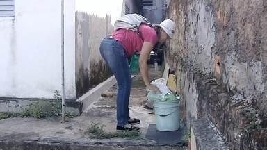 Agentes realizam mutirão contra dengue em bairros de Marília - Em Marília tem mutirão contra a dengue neste sábado (22). Os agentes de saúde estão percorrendo os bairros e até os distritos.