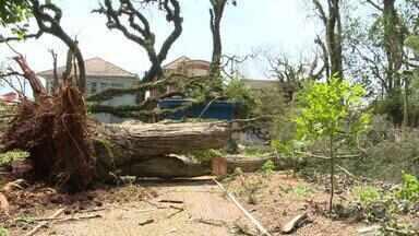 Temporal causa destruição em algumas cidades do RS - Vento chegou a arrancar telhado do IFF de São Borja e atividades são suspensas.