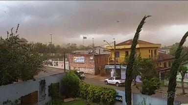 Chuva provoca estragos em várias cidades do estado - Em Curitiba, uma árvore caiu em cima de um carro no Bigorrilho.