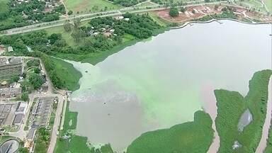Resultado de imagem para mancha verde no lago paranoa