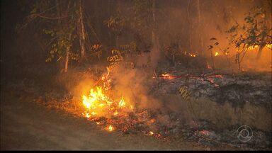 Incêndio atingiu várias propriedades na zona rural de Areia durante cinco dias - Fogo só foi controlado na noite de domingo.