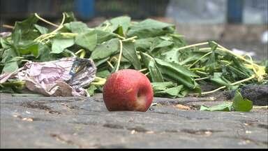 Comerciantes criam estratégias para reduzir perdas de frutas e verduras na feira - Movimento mais fraco por conta da crise agrava situação de desperdício.