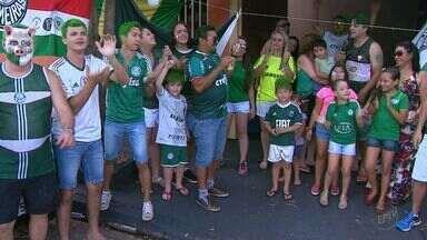 Torcedores comemoram título de campeão brasileiro do Palmeiras - Time enfrentou o Chapecoense e quebrou o jejum de 22 anos.