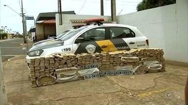 Homem é preso com quase meia tonelada de maconha dentro de carro - Um homem de 35 anos foi preso nesta segunda-feira (28) em Pereira Barreto (SP) com quase meia tonelada de maconha. Ele foi parado durante uma fiscalização na rodovia Feliciano Salles Cunha.