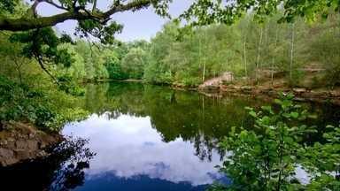 Floresta que inspirou a lenda do rei Artur é um dos mistérios da Bretanha - Realidade e ficção muitas vezes se confundem na floresta de Brocéliande. Lago Espelho das Fadas guardaria no fundo um castelo de cristais.