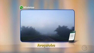 Neblina intensa atrapalha visibilidade de motoristas em Araçatuba - Quem passou pela rodovia Marechal Rondon, em Araçatuba (SP), teve que enfrentar muita neblina na pista na manhã desta terça-feira (13). Segundo a polícia, não foi registrado nenhum acidente. Os policiais também orientam os motoristas a ligar o farol baixo em situações de neblina.