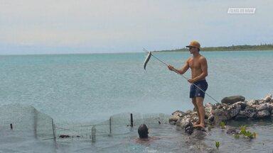 A Vida Simples De Molokai