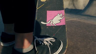 Skate E Novas Amizades
