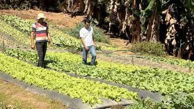 Programa de distribuição de alimentos ajuda moradores em Cariacica, ES - O programa existe há 10 anos no município.