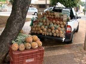 Produção de abacaxi aumenta na região de Pres. Prudente - Frutas são encontradas até pelas ruas de algumas cidades.