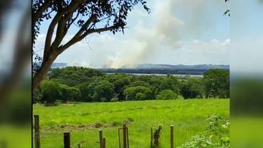 Incêndio em fazenda de Mato Grosso do Sul chamou a atenção dos moradores de Guaíra - Fumaça dava pra ser vista de longe.