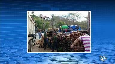 Madeira ilegal é aprendidas em Bom jardim, no Agreste - Madeira é de espécies nativas da caatinga.