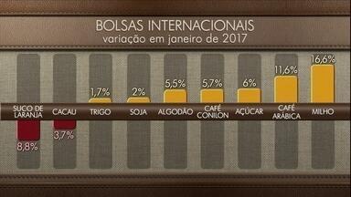 Cotações: veja a variação de preços dos produtos agricolas - Nas bolsas internacionais, a maioria dos produtos teve alta em janeiro. Veja também os preços do boi gordo e do café.