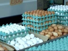 Produtores de ovos comemoram alta do produto - Procura pelo alimento é maior no período da Quaresma.