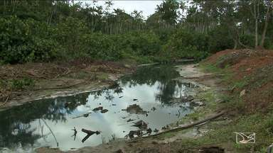 Obra na MA-201 está desmatando margens do Rio Paciência e preocupa ambientalistas - Obra na MA-201 está desmatando margens do Rio Paciência e preocupa ambientalistas