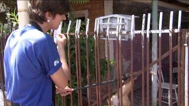 Cães são uma ameaça para pessoas que fazem a leitura das contas de água e luz - Os acidentes com estes profissionais são comuns.