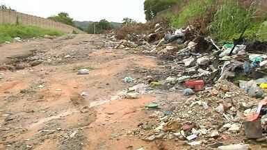 Em Santarém, terrenos e ruas estão sendo transformados em lixão a céu aberto - Doutora em entomologia fala sobre os danos que o lixo pode causar ao meio ambiente.