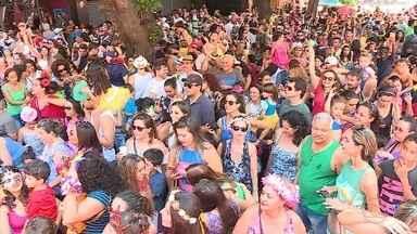 Cerca de 30 blocos desfilam pelas ruas de Belo Horizonte neste domingo - Manhã foi de festa em bloco com crianças na Savassi.