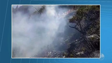 Incêndio que atinge a Serra das Almas, em Rio de Contas, já chega a 675 héctares - Confira os detalhes.