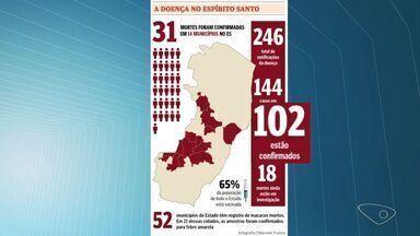 ES tem 31 mortes por febre amarela confirmadas, diz Sesa - Ao todo, estado registrou 102 casos confirmados até a sexta-feira (17).