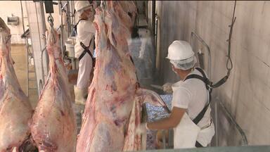 JPB mostra como é o trabalho de fiscalização de carne em Campina Grande - Veja na reportagem de Waléria Assunção.