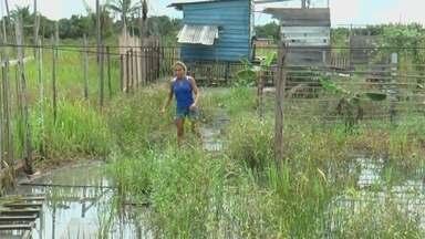 Subida do rio preocupa moradores de Barreirinha, no AM - Nível elevado da água muda rotina.