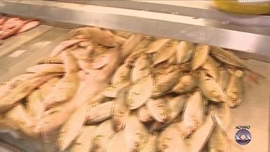 Mercado Público é opção para quem procura peixe para a Semana Santa, em Florianópolis - Mercado Público é opção para quem procura peixe para a Semana Santa, em Florianópolis