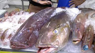 Confira o preço dos peixes da Semana Santa; economia pode chegar aos 40% nesta terça (11) - JM foi a feira mostrar as novidades; confira.