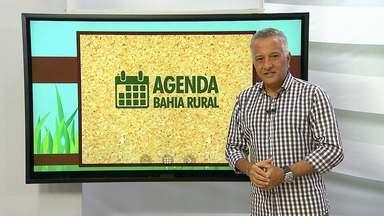 Confira a agenda com os principais eventos rurais que acontecem em toda a Bahia - Assista ao vídeo e saiba também como divulgar eventos no Bahia Rural.